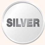 Silver edited pdf